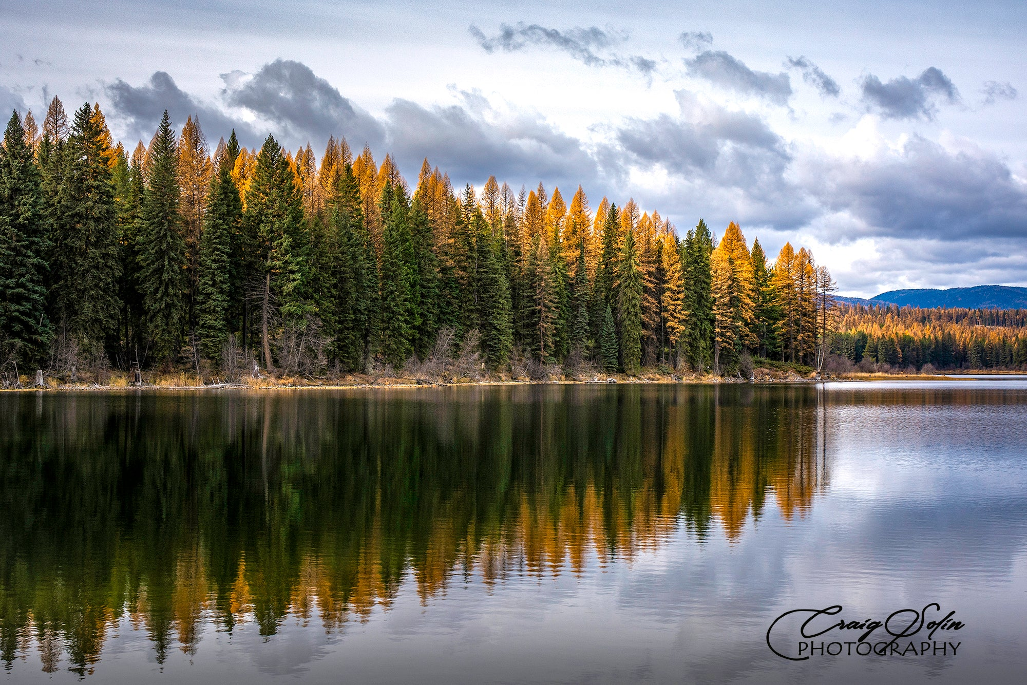 Craig Solin Wildlife and Nature Photography Montana