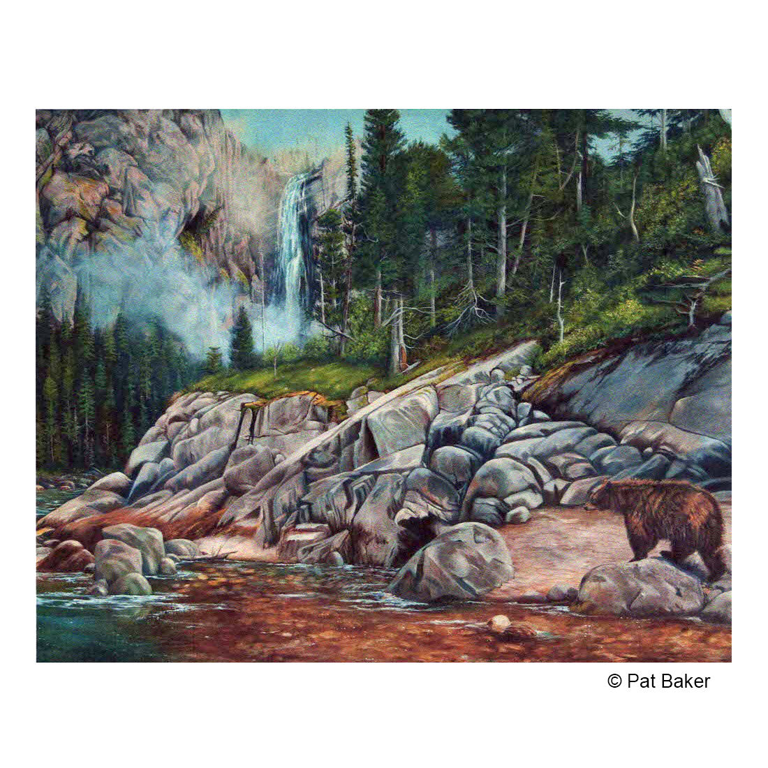 """Bitterroot River Bear"" Original Oil Painting by Montana Artist Pat Baker"