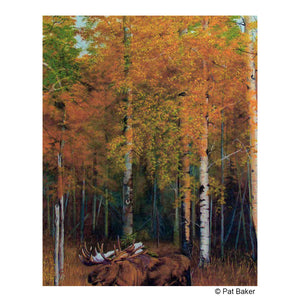 """Fall Moose"" Original Oil Painting by Montana artist Pat Baker"