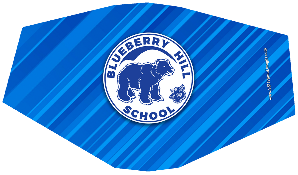 Blueberry Hill School