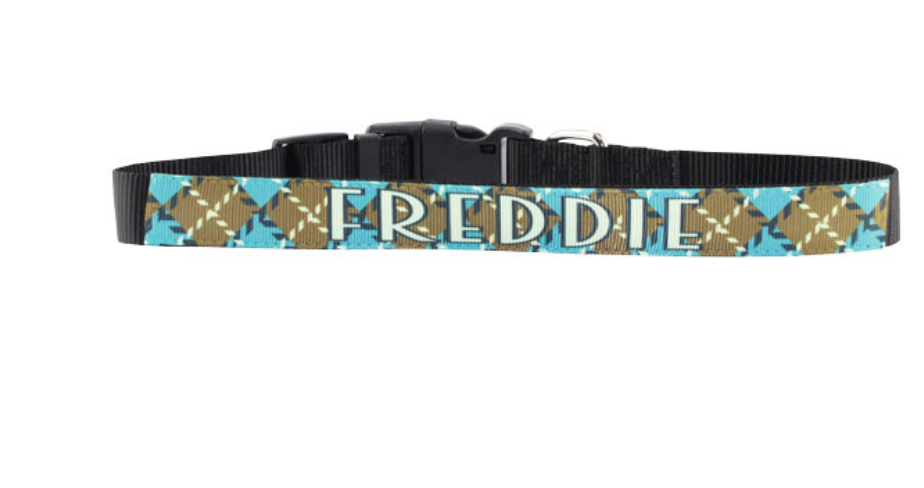 Custom Pet Collar