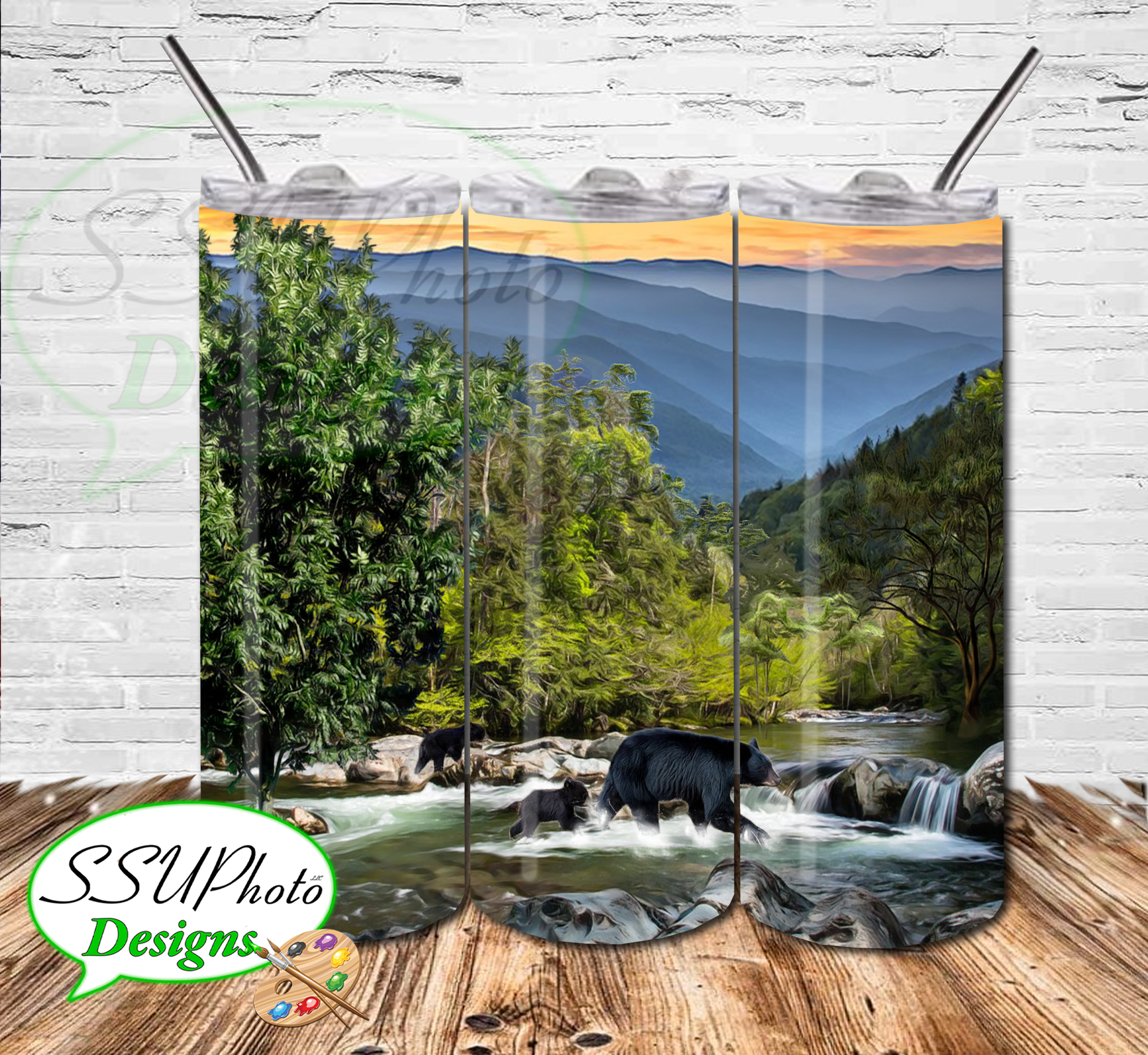 Smoky Mountains 20 OZ Skinny TumblerD Digital Design