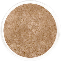 Moon-Kissed Light Bronzer / Bronzer for Light Complexions