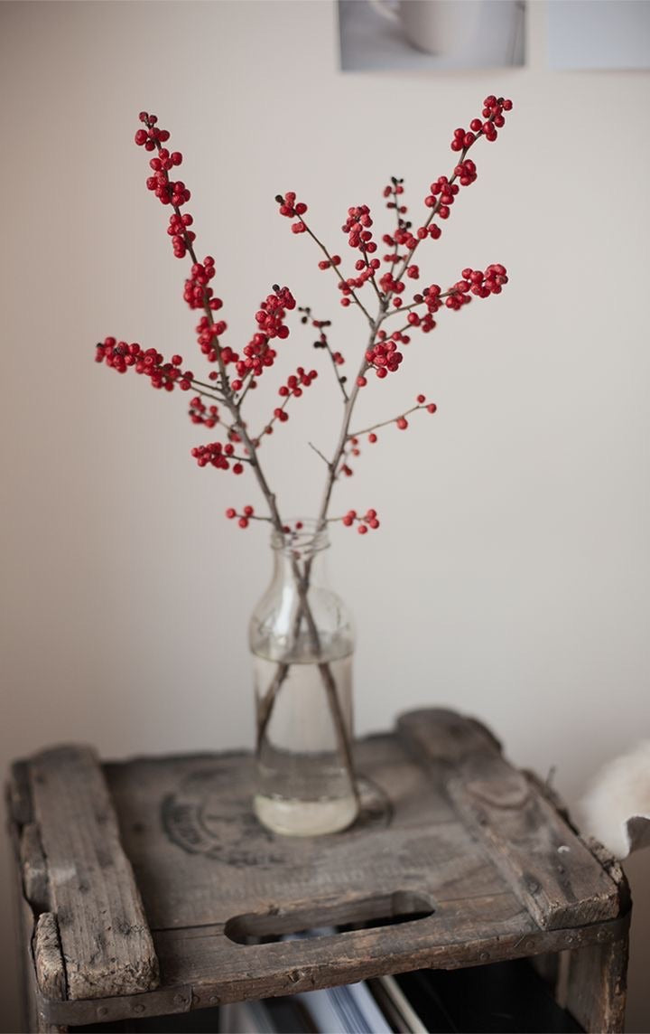 Holiday Stems & bunches