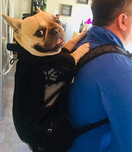 Load image into Gallery viewer, Dog Backpack gotolovely