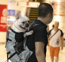 Load image into Gallery viewer, Dog Backpack Gray / S gotolovely
