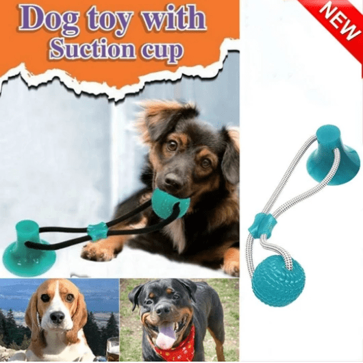 【Highest monthly sales】Flexible Pet Molar Bite Toy BLUE gotolovely
