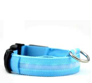 KindlePaws LED Dog Collar blue / XS gotolovely