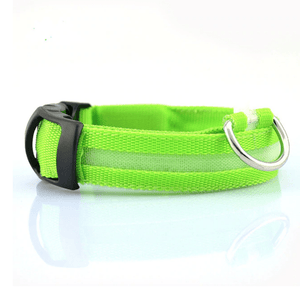 KindlePaws LED Dog Collar green / XS gotolovely