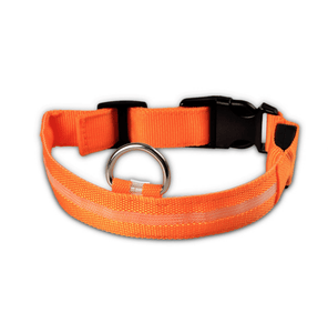 KindlePaws LED Dog Collar orange / XS gotolovely
