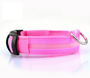 KindlePaws LED Dog Collar Pink / XS gotolovely