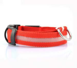 KindlePaws LED Dog Collar red / XS gotolovely