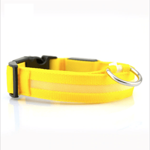 KindlePaws LED Dog Collar yellow / XS gotolovely