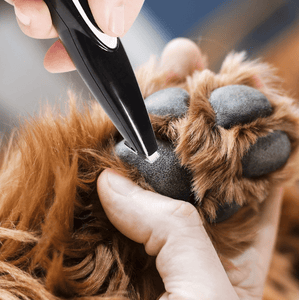 Low Noise Electric Pet Grooming-Pet local trimmer gotolovely