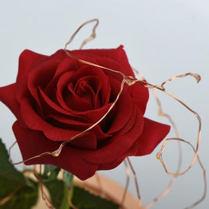 The Enchanted Rose gotolovely