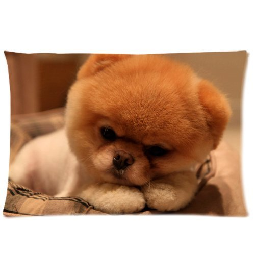 Pillowcase Boo The Dog Pet Dog Custom Pillow Cases Covers Standard Size 20