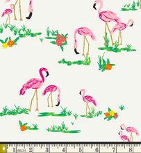 Load image into Gallery viewer, Art Gallery Fabrics - Flamingo Field - Pearl - 1/2 YARD CUT