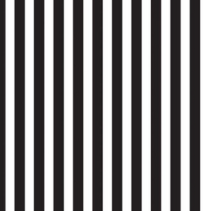 Riley Blake - Pirate Tales - Stripes Black  - 1/2 YARD CUT