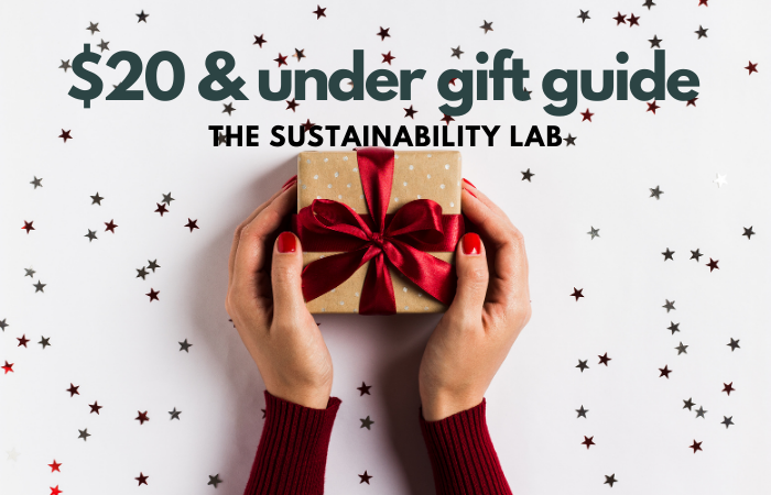$20 and under gift guide