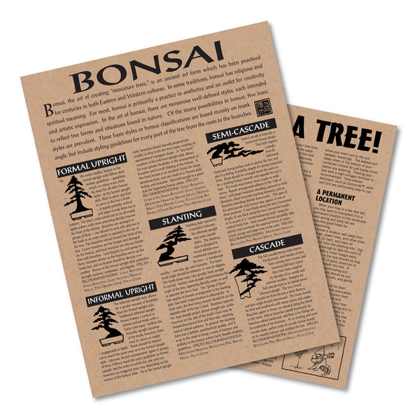 Bonsai Tree Grow Kits (Multiple Tree Types)