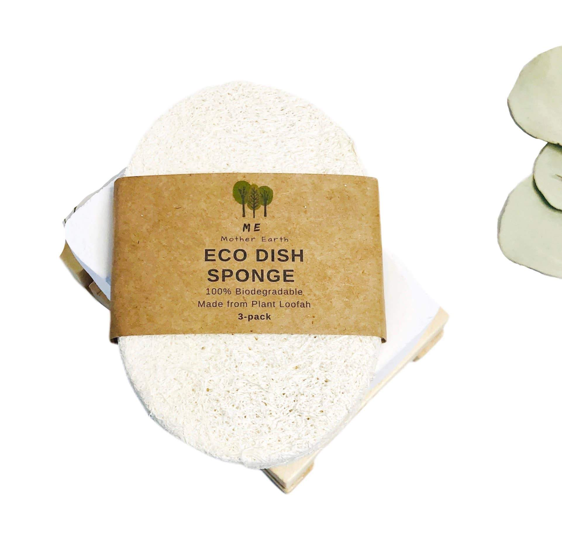 These 100% biodegradable Loofah Dish Sponges replace traditional foam and plastic sponges for dishwashing and household cleaning. Made 100% from loofah plants!  Expands in size and softens in water to work like a typical dish sponge, but without the plastic waste.