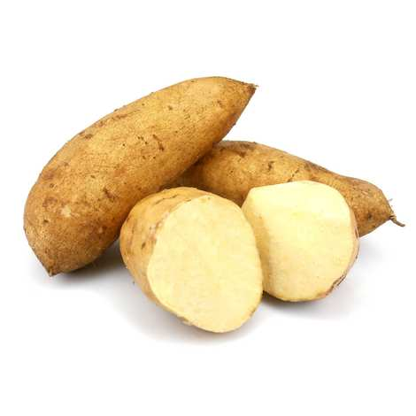 Kamote Puti (Sweet Potato White) - Mr. Gulay Online Store