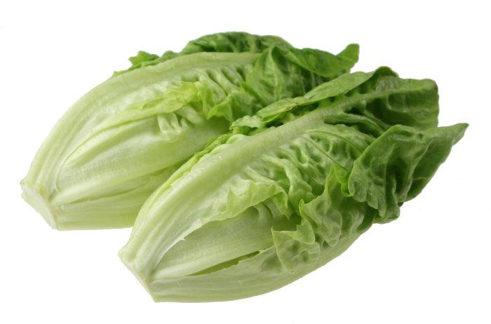 Romaine Lettuce - Mr. Gulay Online Store
