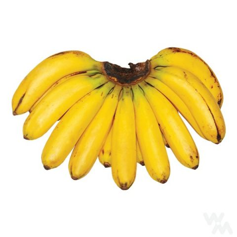 Banana Lakatan Piling ( est. weight 1.6-1.8kg ) - Mr. Gulay Online Store