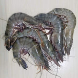 Sugpo ( Tiger Prawns )( Approx. 35-40pcs/kg ) - Mr. Gulay Online Store