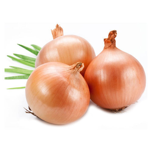 Onion White - Mr. Gulay Online Store