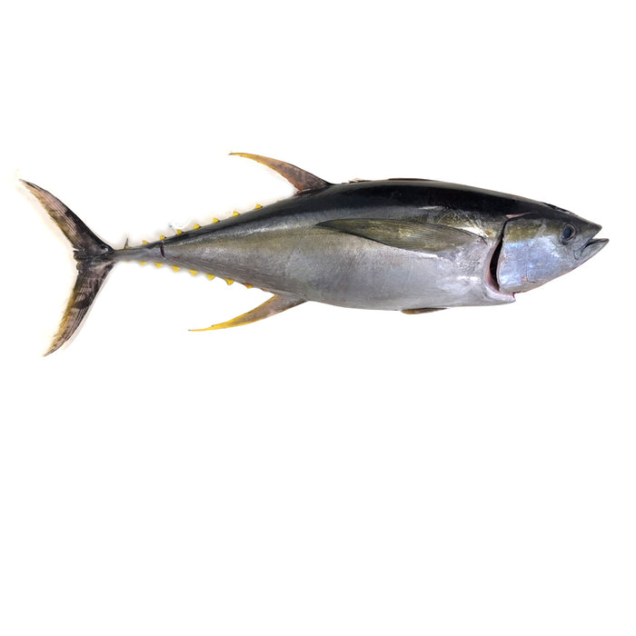 Yellowfin Tuna kg(Approx. 500g-700g/pc) - Mr. Gulay Online Store