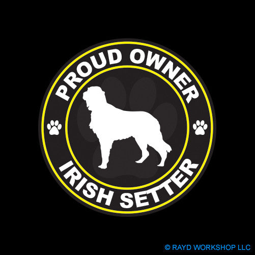 Proud Owner Irish Setter
