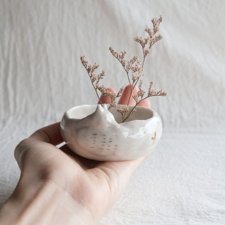 Sleepy Fox Planter | Starry Sun Ray