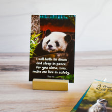 Load image into Gallery viewer, God's Creation for Kids! Scripture Memory Verse Cards