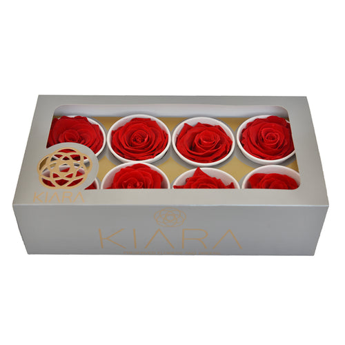 Preserved KIARA Roses Super (8 / w-box)