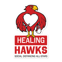 Healing Hawks Stickers - Loosetooth.com