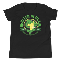 Shelter In Place Turtle | Youth T-Shirt - Loosetooth.com