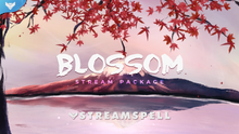 Load image into Gallery viewer, Blossom Stream Package