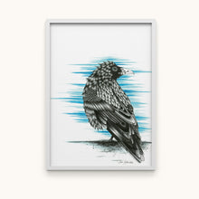Load image into Gallery viewer, Huginn