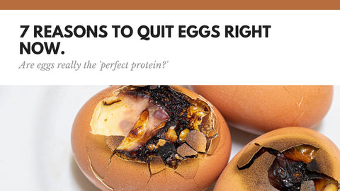 7 Reasons Why EGGS Are Bad For Your Health.