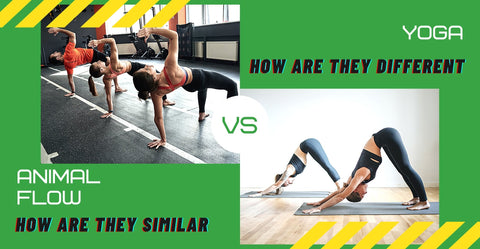Animal flow VS Vinyasa yoga.