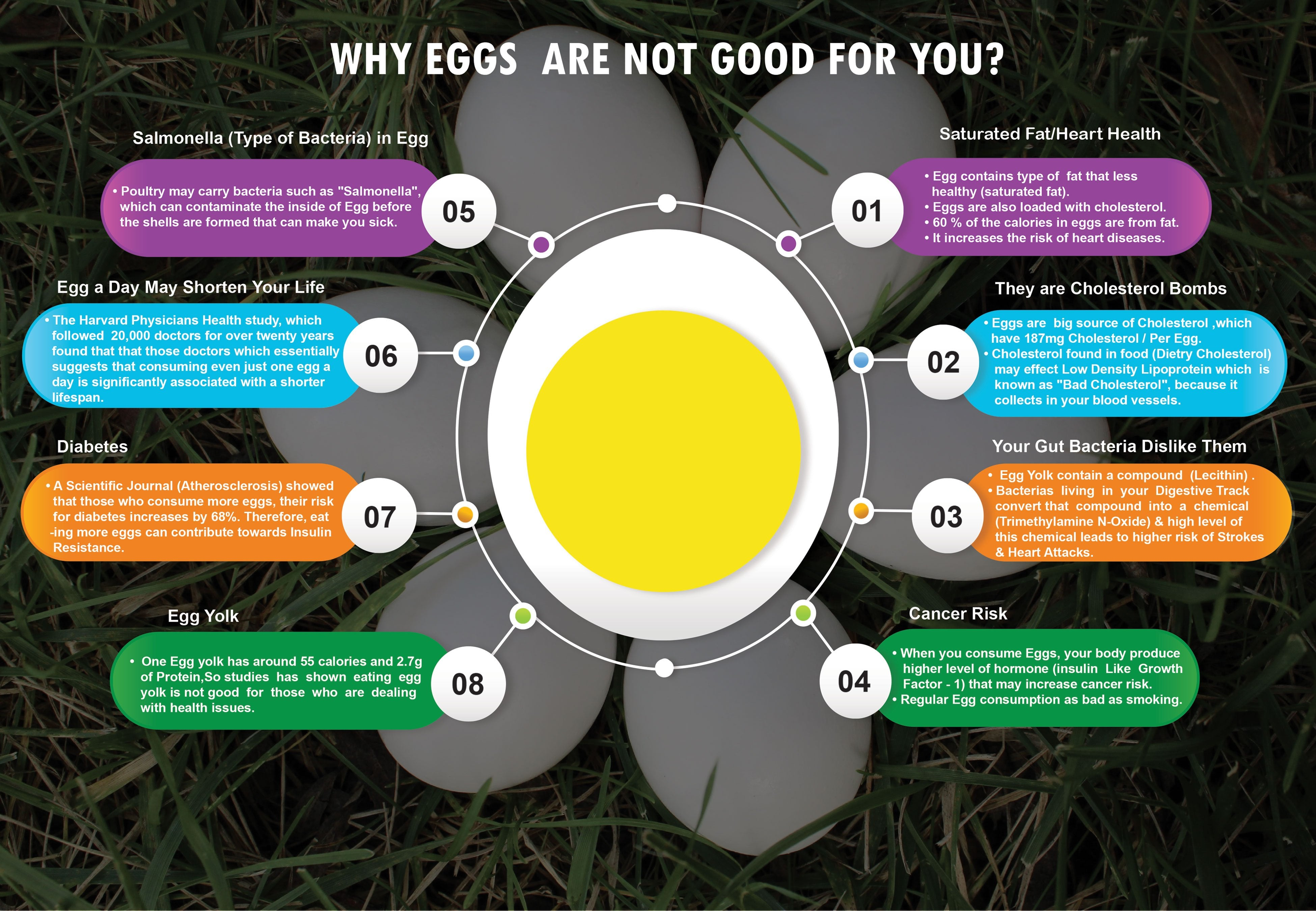 Research on Eggs being bad for health