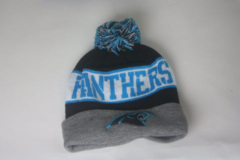 Panthers Grey/wht/Blue Beanie - HatsbyWill  - 1