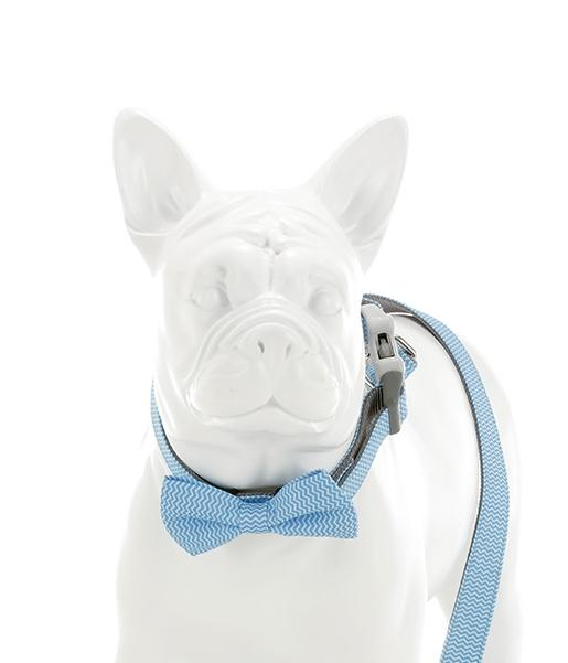 Blue Chevron Bow Tie - Targa Pet Shop