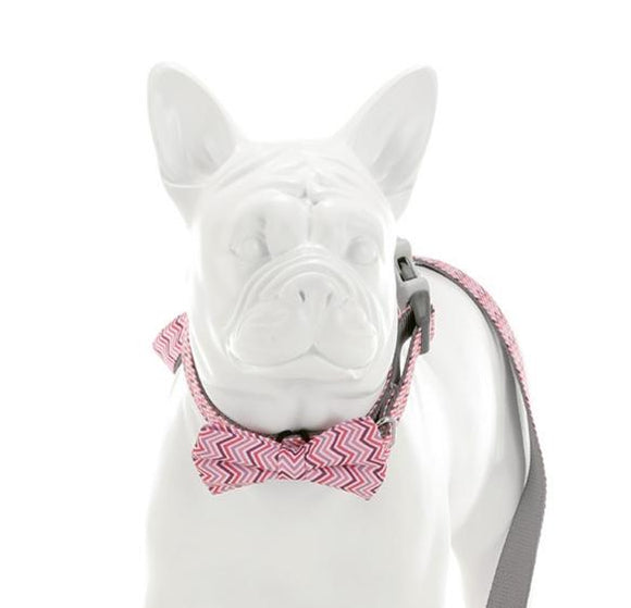 Pink and Purple Chevron Bow Tie - Targa Pet Shop