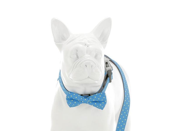 Blue and Green Polka Dot Bow Tie - Targa Pet Shop