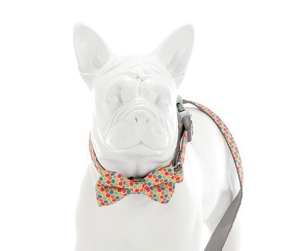 Multi Coloured Geometric Bow Tie - Targa Pet Shop
