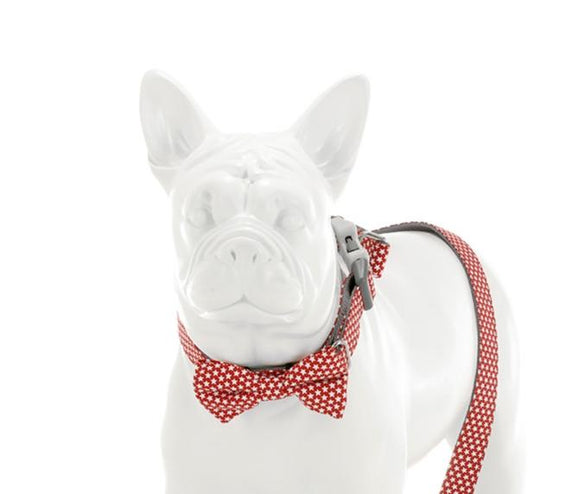 Red Star Bow Tie - Targa Pet Shop