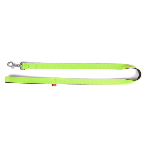 Dingo Energy Leash - Targa Pet Shop