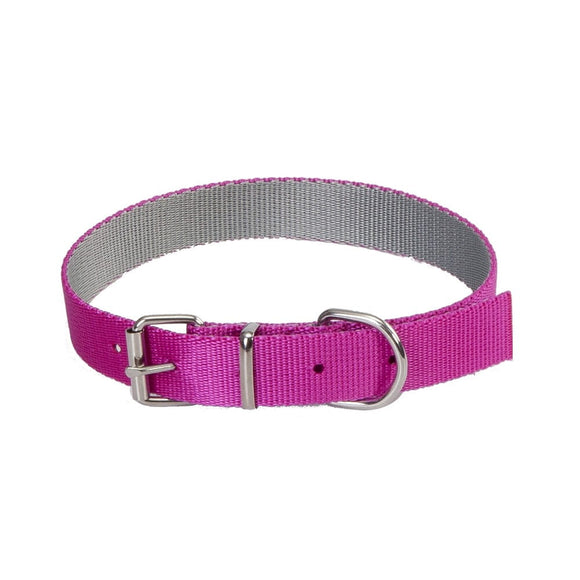 Dingo Energy Silver Collar - Targa Pet Shop